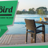 Early Bird Offer (Local & Foreign)