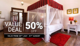 Value Deal 50% Off