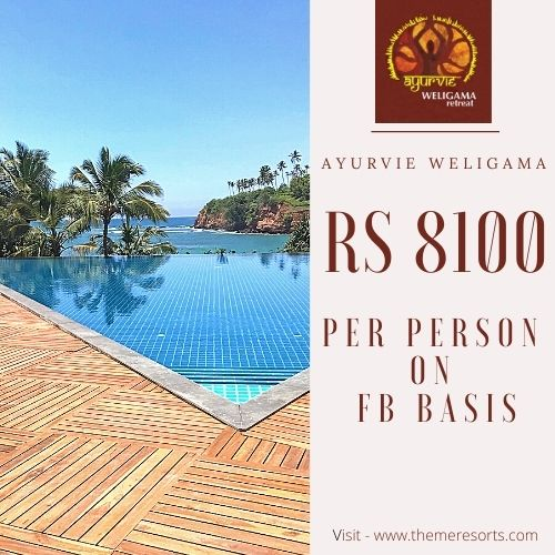 Theme Resorts Special Offers