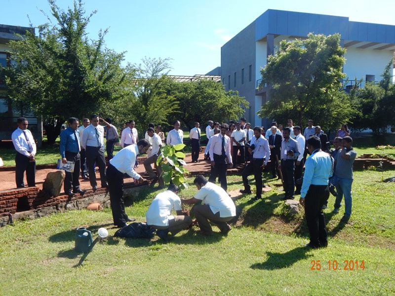 Nineteenth International Forestry and Environment Symposium 2014